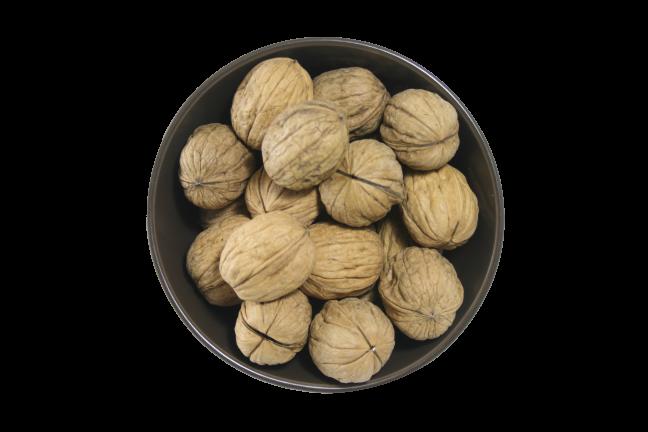 Walnuts_Inshell